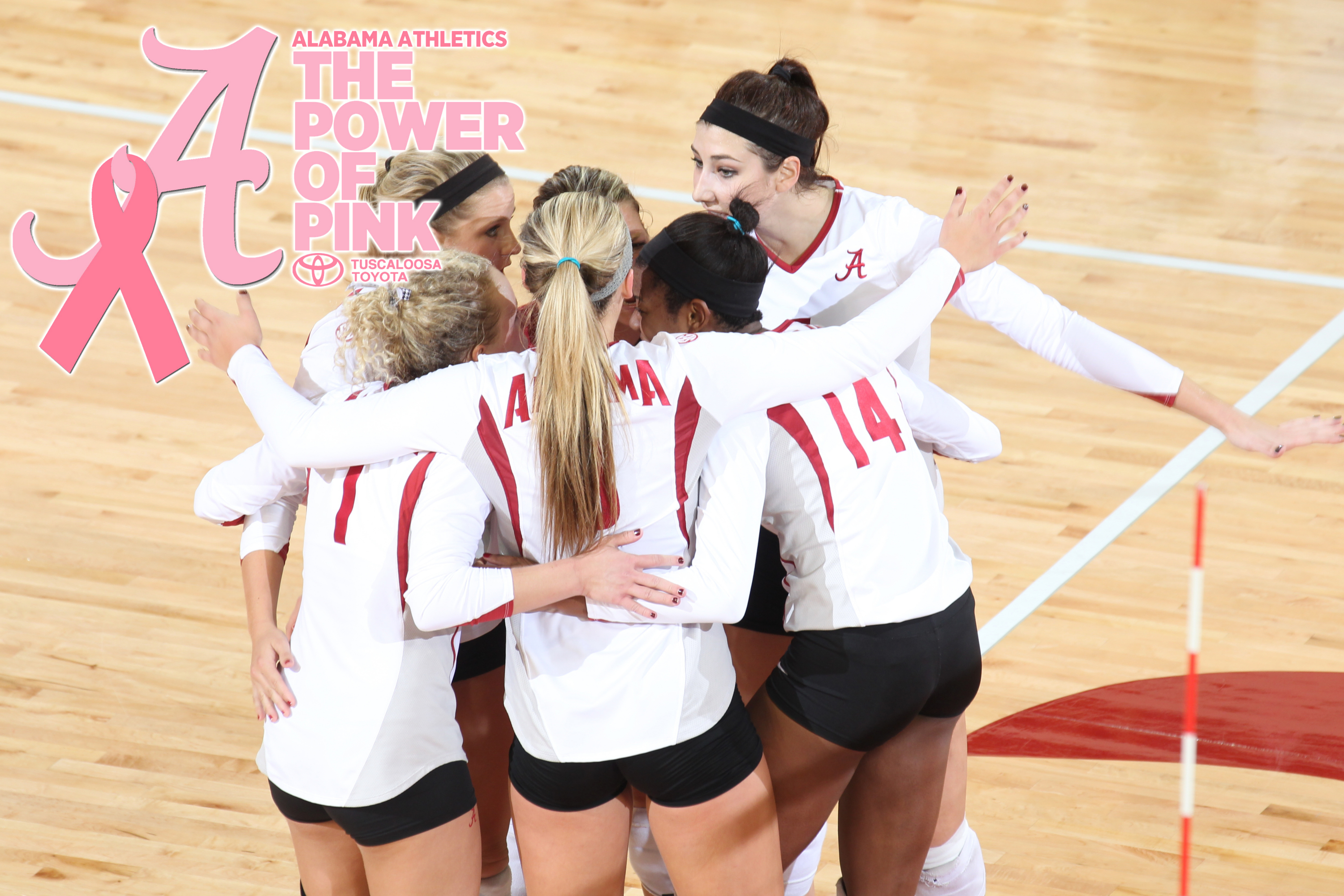 Volleyball to Host Power of Pink Match Friday
